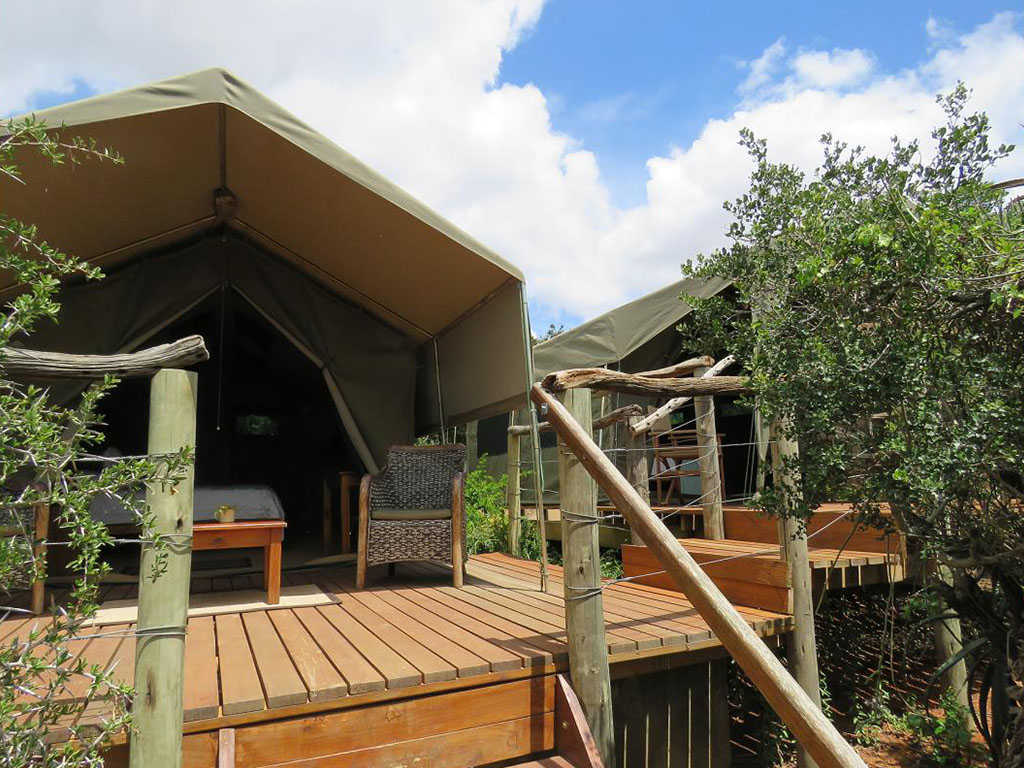 Woodbury Tented Camp  Accommodation   Tents Exterior