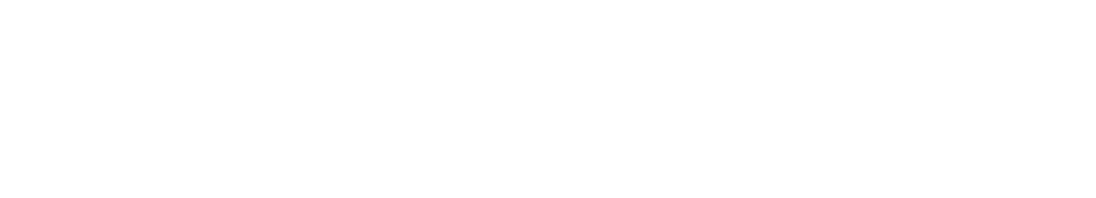 AmalyaRealtyGroup_real estate services_big darker-01-w