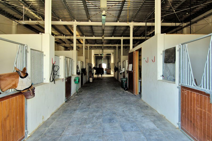 Equestrian Facility for Emaar at Arabian Ranches