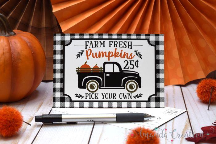 Farm Fresh Pumpkins In Black Pickup Truck Postcards