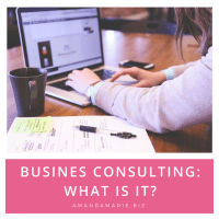 BIZ CONSULTING: What the heck is it anyways?!