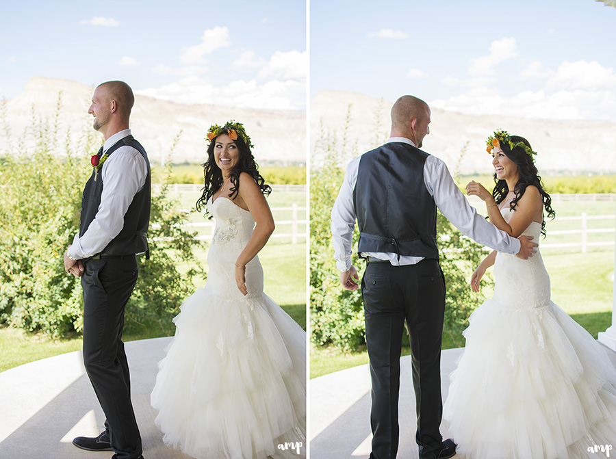 Connor courtnee palisade wedding photographer amanda for Wedding dresses grand junction co