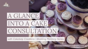 A GLANCE INTO A CAKE CONSULTATION with Cakelady Creations in Grand Junction
