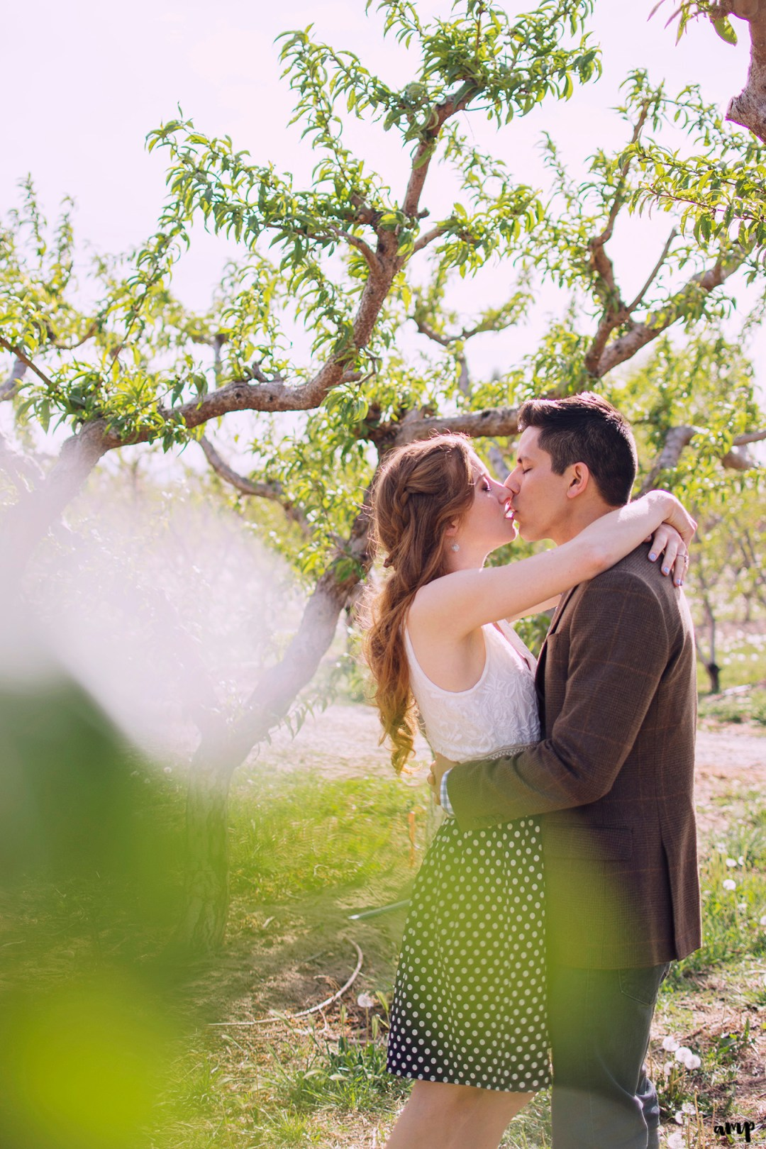 spring engagement session at Colterris Wines