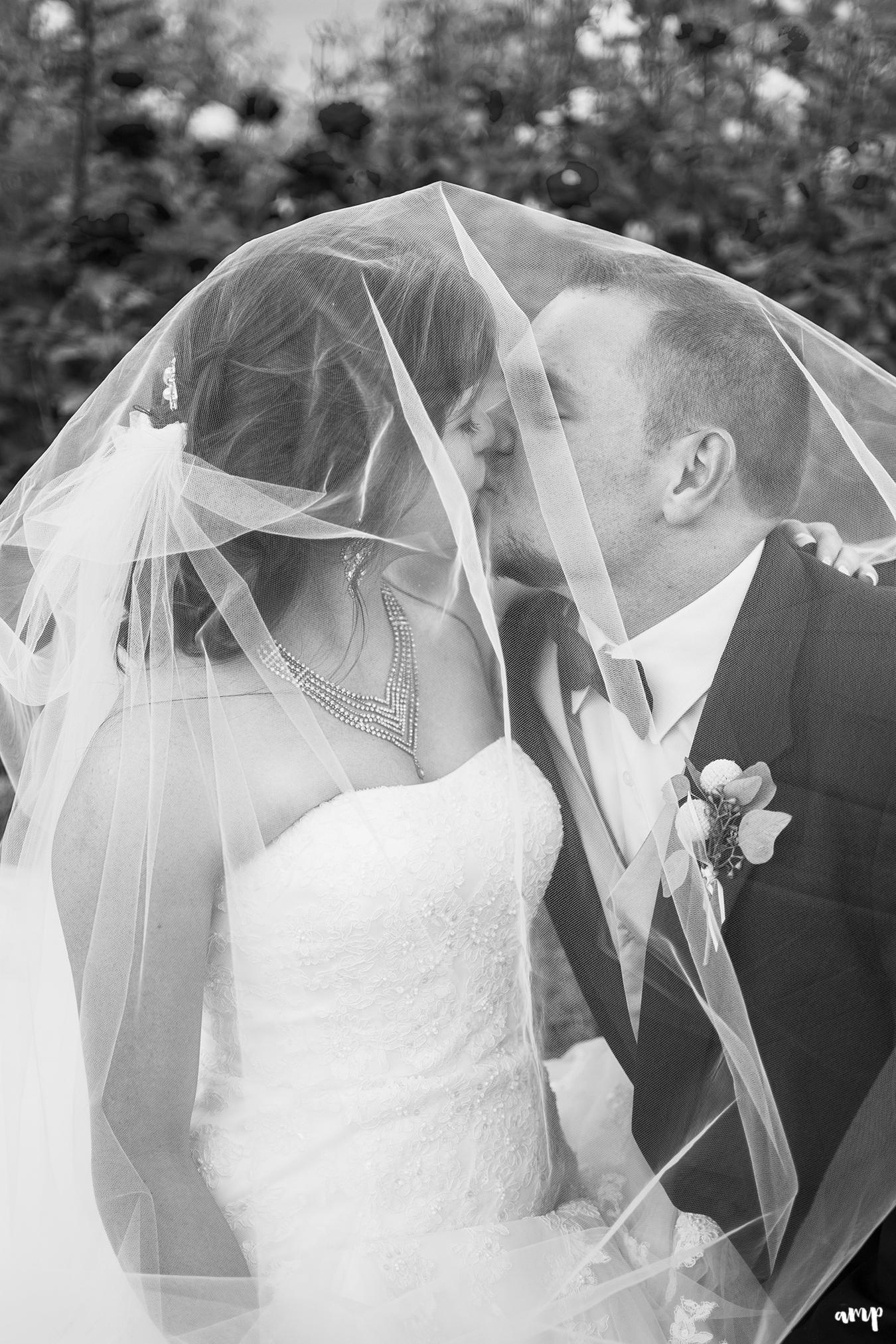 Bride and groom kissing beneath the wedding veil