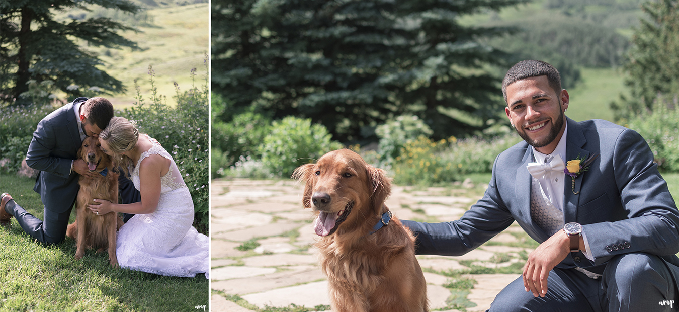 Photos with the bride and groom and their dog