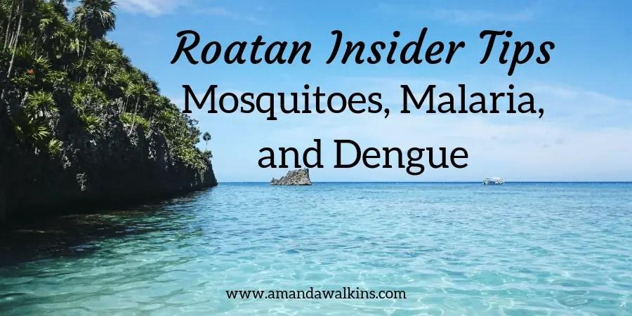 Roatan island mosquitoes