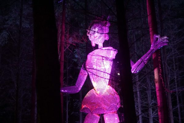 enchanted-forest-figure