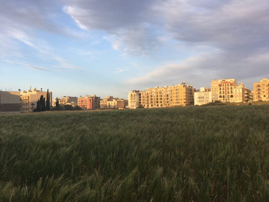 Malta fields and apartment blocks