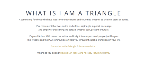 Expats and repats gather online at I Am a Triangle - learn more