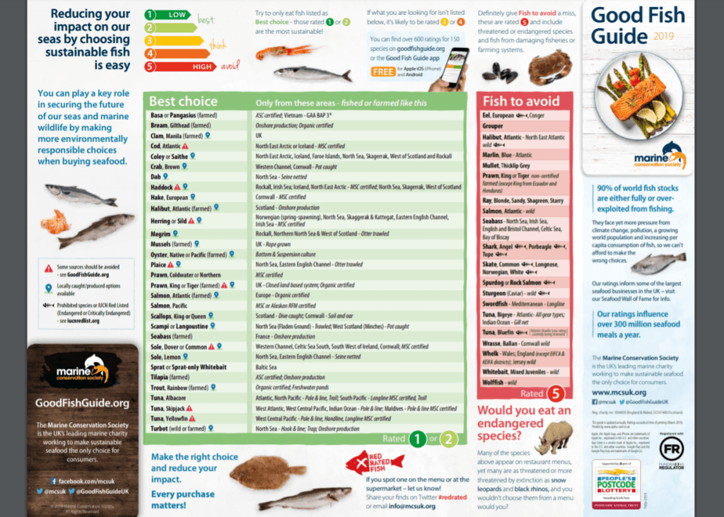 MSC Good Fish Guide what fish to eat and what to avoid for conservation and sustainability
