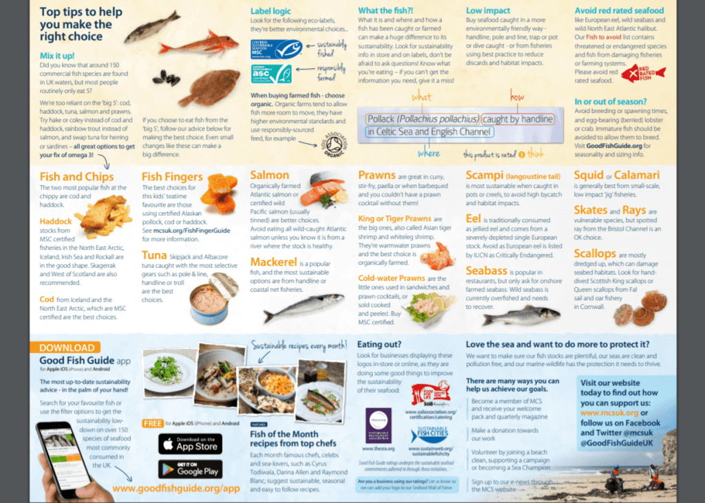 Tips for choosing the right fish to eat and the fish to avoid for sustainability and conservation