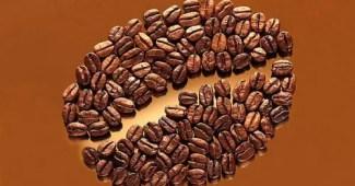 Curiosidades sobre el café