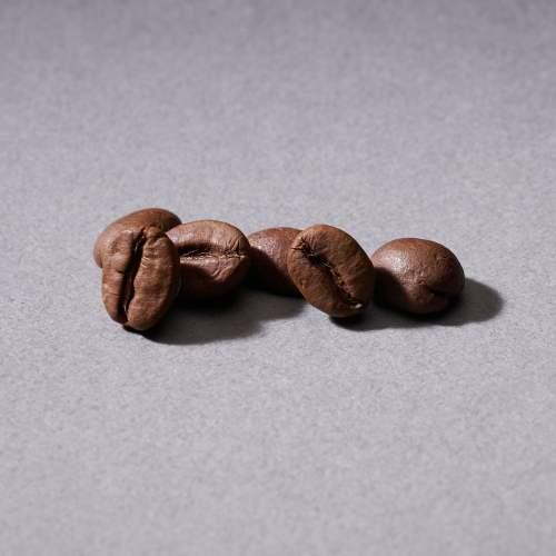馬拉威藝妓 咖啡豆(230g)