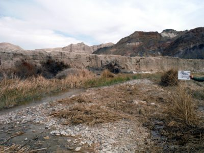 After tamarisk removal along the Amargosa River near the Slot Canyon