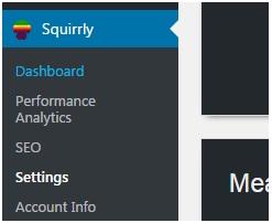 verifywebsiteinbing webmaster_squirrly_001