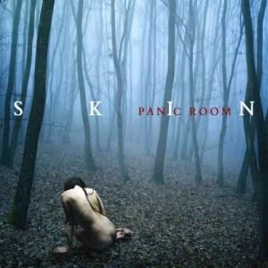 Panic Room - Skin (2012)