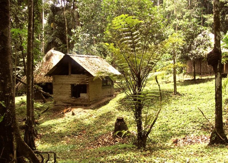 La Chonta : au coeur de l'Amboró