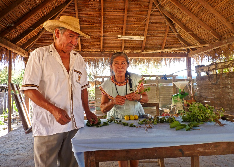 Cultures de la Chiquitania