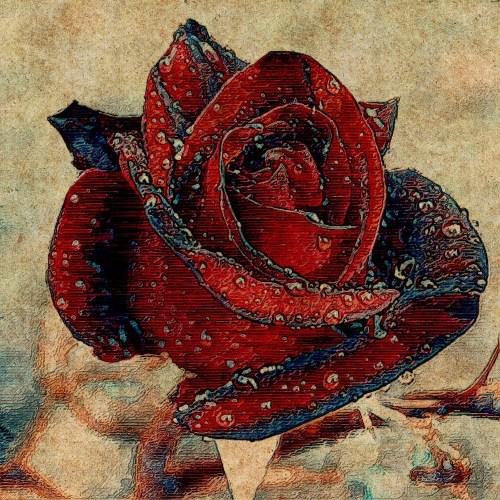 Flower digital painting