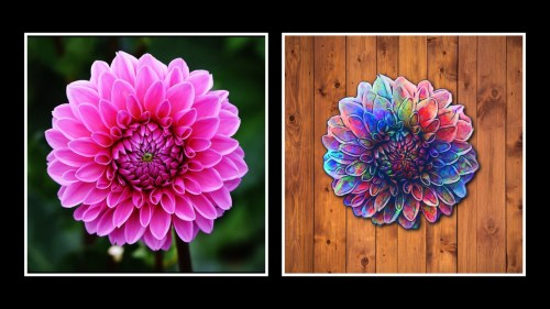 Flower painting from photo