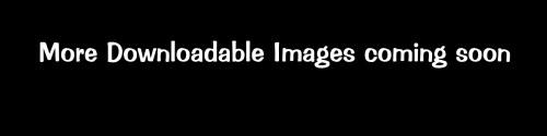Downloadable assets for digital art