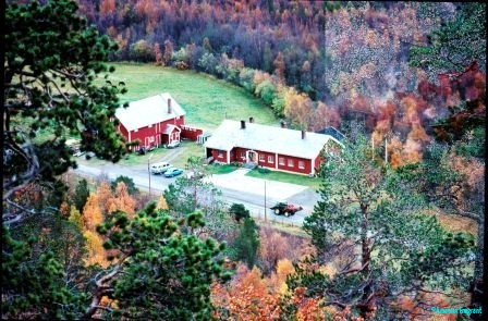 Typical red and white Norwegian wooden buildings set in an area of pasture surrounded by forest