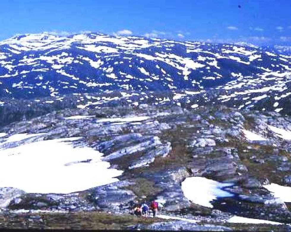 Ridge walk above Svartisen