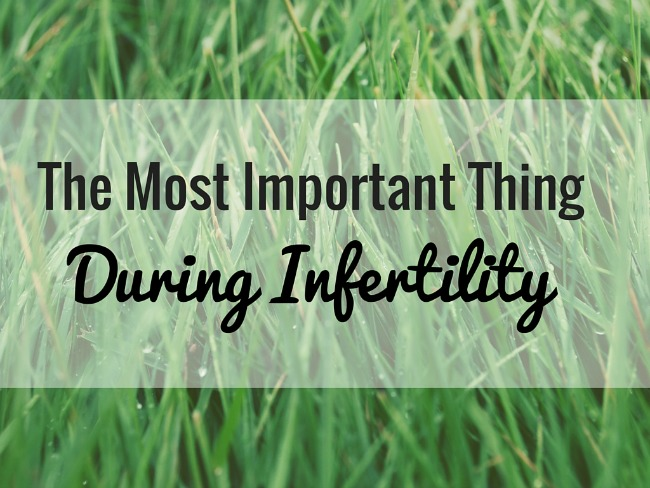 during infertility
