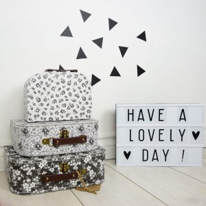 Create and store lasting memories for children of all ages with the Paris Flowers Set Of Three Suitcases. The suitcases can be stacked on top of each other to make for a striking and adorable decoration for baby's nursery or child's room.