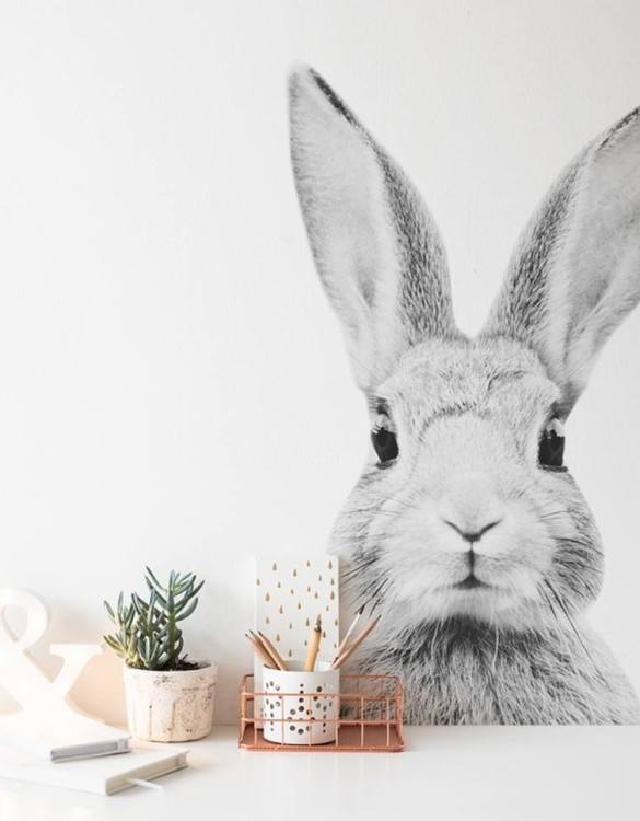 A beautiful scene for children's rooms and nurseries, the Stefan Rabbit Monochrome Children's Wall Sticker is the perfect addition to any empty space (like walls or furniture). These wall stickers provide a flexible and cost-effective way to decorate your home.