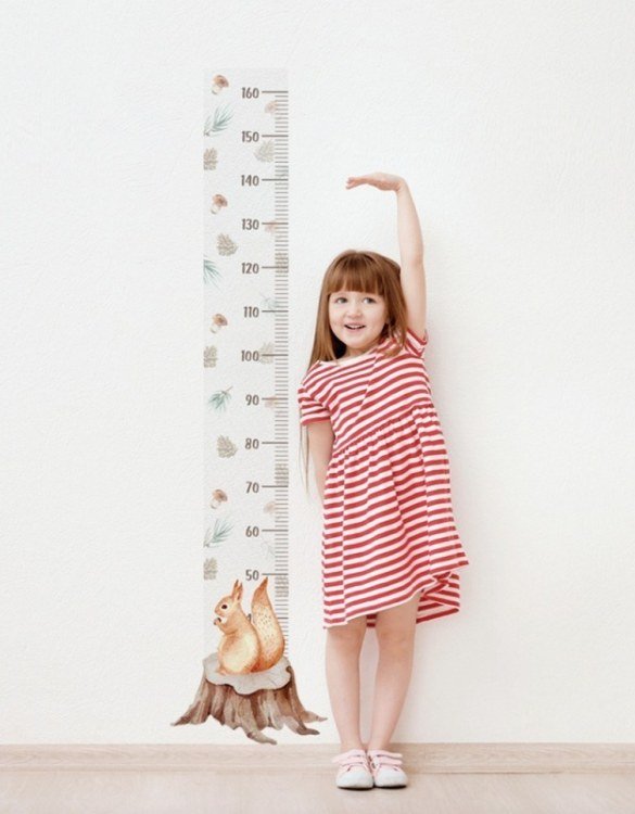 A real eye-catcher in every child's room, the Squirrel Child Growth Chart is the perfect way to follow your child's development and growth. Bright and colourful, this height chart wall sticker will look good in nurseries, bedrooms, or playrooms.