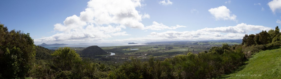 lake taupo from scenic lookout