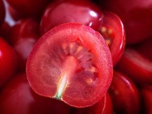 fotografie jídla - rajče