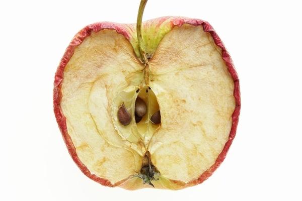 Oksidasi Apel