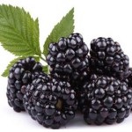 4 Manfaat Kesehatan & Kandungan Nutrisi Blackberry