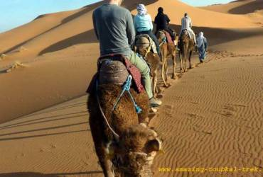 3-day desert trip marrakech