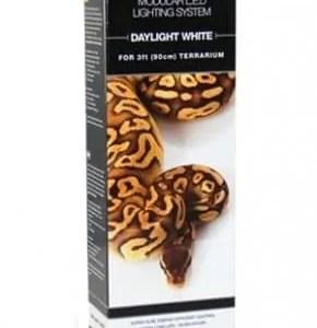 White Python LED Light Kits