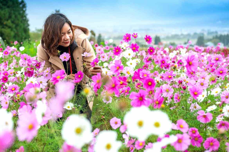 Inawashiro Herb Garden