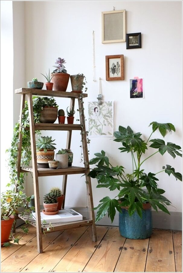 13 Fresh Ideas for Indoor Planter Stands on Plant Stand Ideas  id=37693