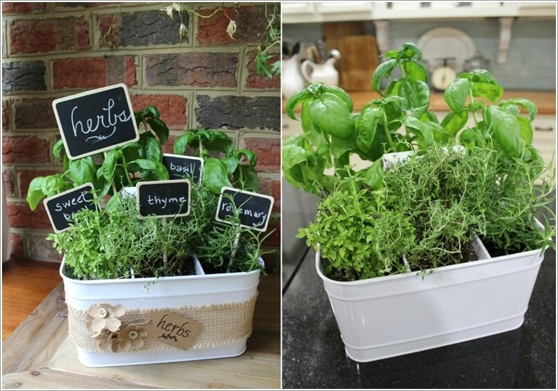 Galvanized Vegetable Planters