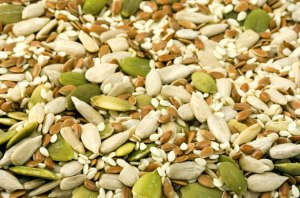 Seeds For Eye Sight