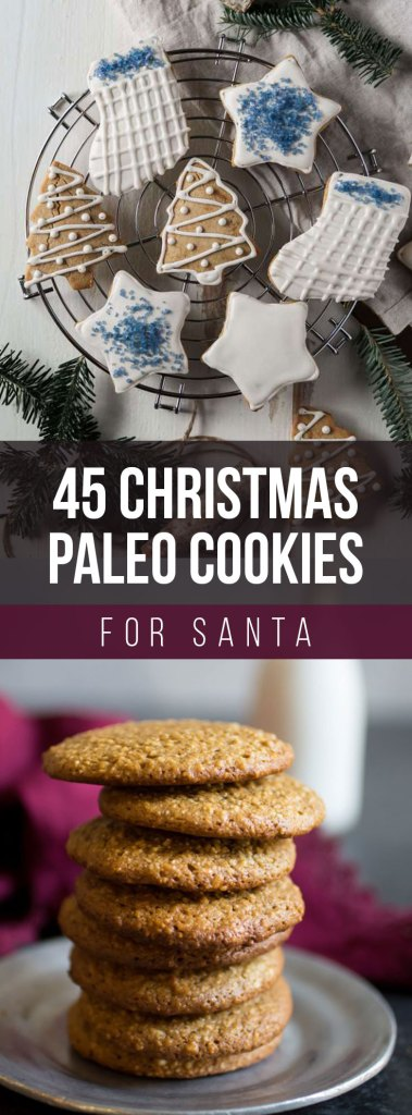 45 Paleo Christmas Cookies for Santa