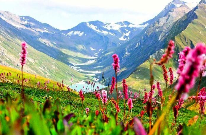 valley-flowers-trek-visit