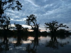 Sunsets and interesting Amazon travel information at Laguna Grande
