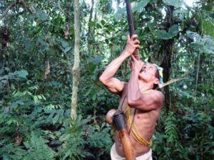Waorani or Huarani hunter in Ecuadorian Amazon tour