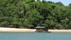 Expeditionen, Amazonas-Überschwemmungsgebiet »Canal do Jari«, Bild 2