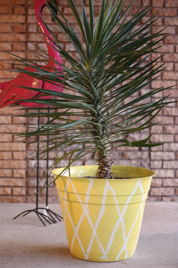 Pineapple Planter with Flamingo