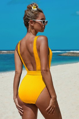Candice Vertical Stripes Solid Yellow One-piece Swimsuit with Belt