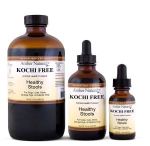 Kochi Free